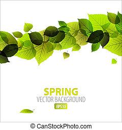абстрактные, весна, задний план, цветочный