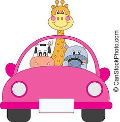 автомобиль, animals, driving