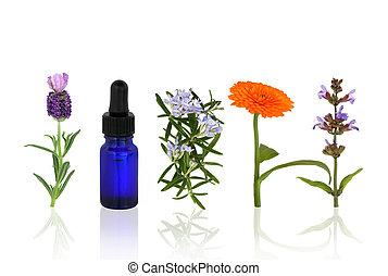 ароматерапия, цветы, травы