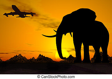 африка, travel.