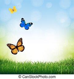 бабочка, весна, пейзаж