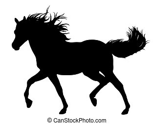 бег, лошадь