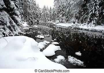 белый, зима, пейзаж