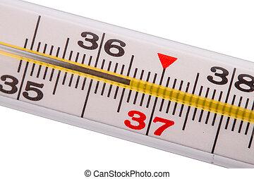 белый, isolated, задний план, термометр