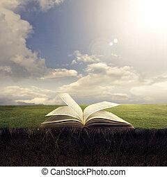 библия, открытый, земля