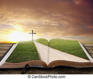 библия, открытый, road.