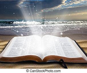 библия, пляж