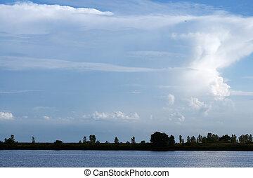 боковая сторона, озеро, парк
