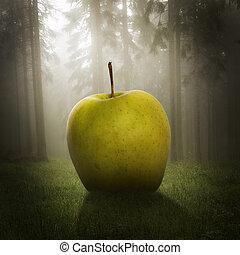 большой, лес, яблоко