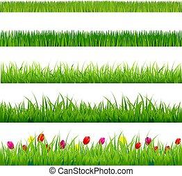 большой, цветы, трава, задавать, зеленый