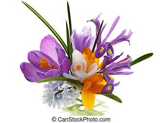 букет, цветок