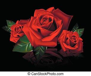 букет, roses, reflectio, красный