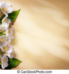 бумага, изобразительное искусство, весна, задний план, рамка, цветы