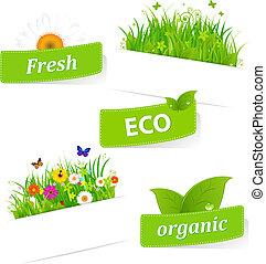 бумага, трава, липкий, зеленый, цветок