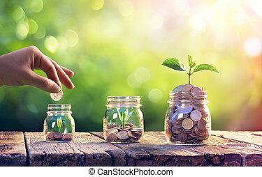 вверх, инвестиции, выращивание, деньги, plants, концепция, спасти, jars