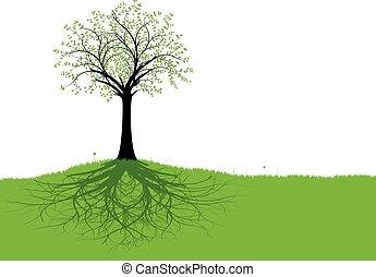 вектор, дерево, roots