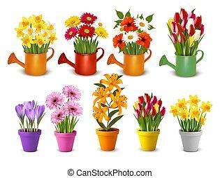 вектор, полив, весна, pots, мега, лето, цветы, коллекция, красочный, cans.