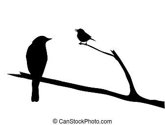 вектор, силуэт, птица, филиал