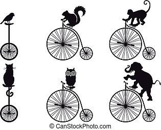 велосипед, вектор, animals, ретро