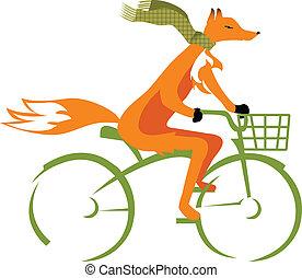 велосипед, лиса