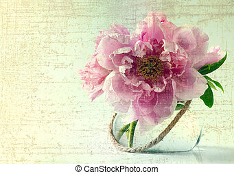 весна, белый, цветы, задний план, ваза