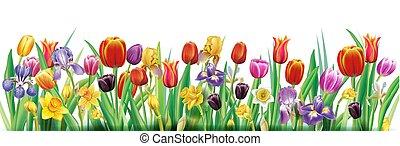 весна, договоренность, цветы, многоцветный