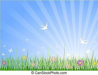 весна, луг, задний план