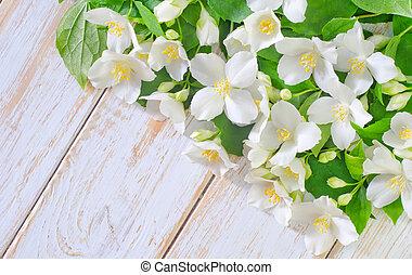 весна, рамка, жасмин, задний план, белый, цветы