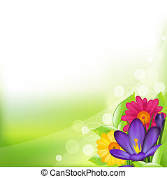 весна, цветок