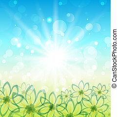 весна, цветы, задний план, природа
