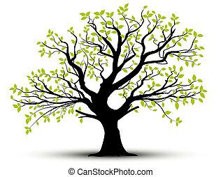весна, leaves, вектор, -, дерево
