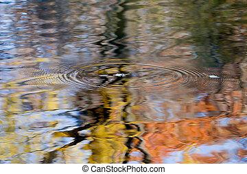 воды, осень, leaves, falling