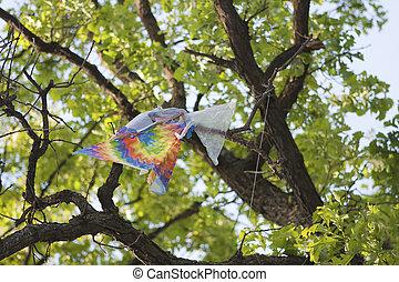 воздушный змей, пойманный, дерево