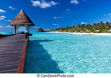 вокруг, остров, overwater, тропический, лагуна, спа
