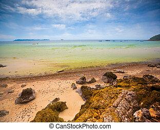волна, пляж, пейзаж, море