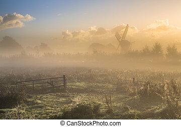 ворота, над, сельхозугодий, туман, утро