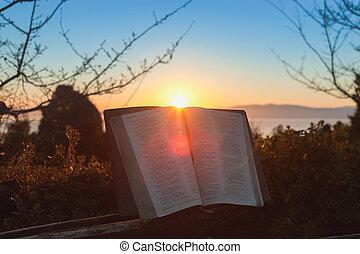 вспышка, синий, задний план, восход, библия, открытый, japan., город, море, fuji, гора, небо