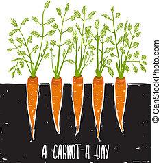 выращивание, буквенное обозначение, carrots, рисование, колючий