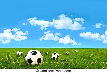 высокий, поле, мячи, футбольный, трава