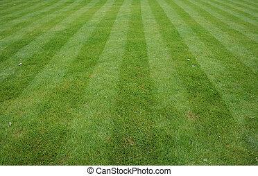 газон, порез, stripes