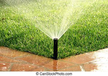 газон, сад, полив, орошение, система, автоматический