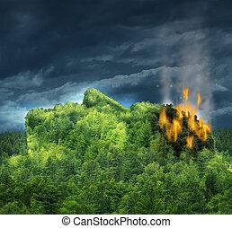 глава, человек, лес, слабоумие, поврежденный, гора, trees, значок, память, потеря, форма, alzheimer's, медицинская, flames, разум, болезнь, головной мозг, сжигание, thoughts, проигрыш