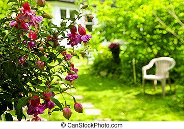 главная, сад