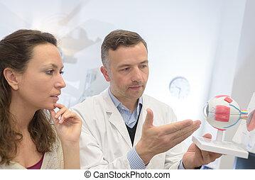 глаз, офтальмолог, пациент, explaining, модель