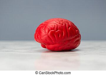 головной мозг, красный