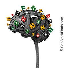 головной мозг, направление