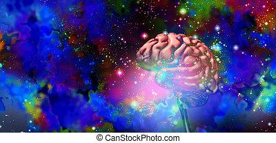 головной мозг, наука