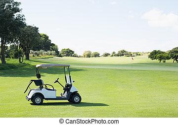 гольф, один, детская коляска, нет, вокруг