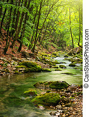 гора, река, лес, глубоко