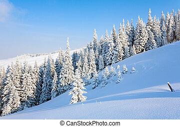 горный пейзаж, зима